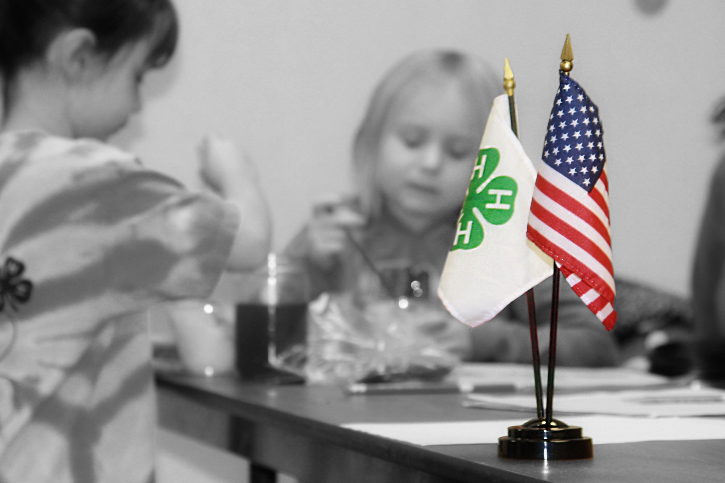 4-H is growing and is free to join in Oneida County – Extension